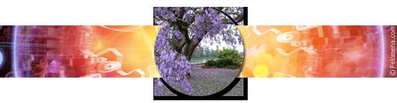 Гороскоп Весов на весну 2017 года