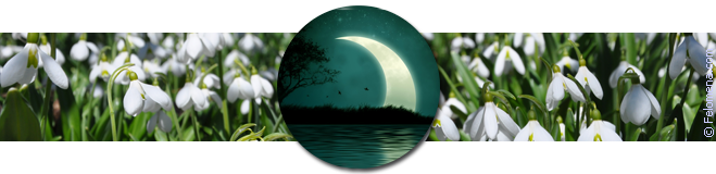 Лунный календарь стрижек на апрель