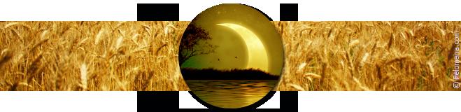 Лунный календарь стрижек на август