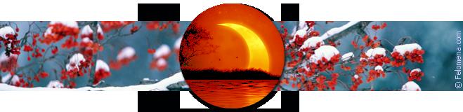 Лунный календарь стрижек на декабрь