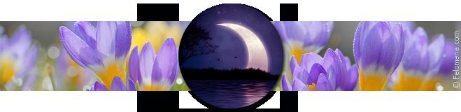 Лунный календарь стрижек на март