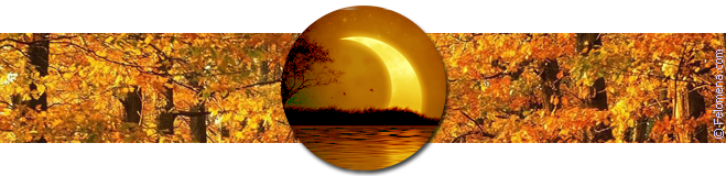 Лунный календарь стрижек на октябрь