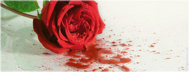 Сильный приворот на месячные (менструальную кровь)