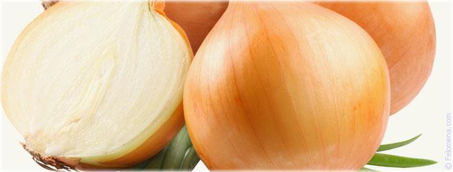 Сильная рассорки на лук и луковицу