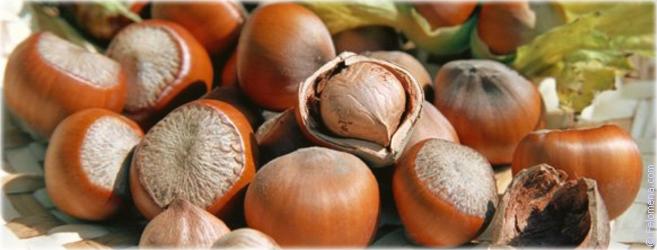 Ореховый спас: приметы и суеверия связанные с праздником