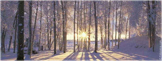 Приметы в сезоне Зима