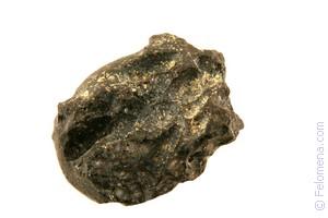 Сонник Астероид