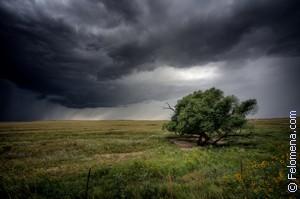 Сонник Буря