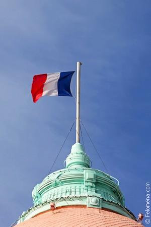Сонник Флаг