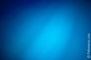 Сонник Голубой цвет