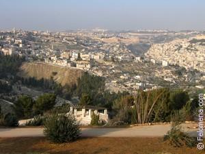 Сонник Иерусалим