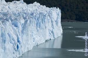 Сонник Ледник