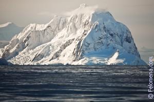 Сонник Северный полюс