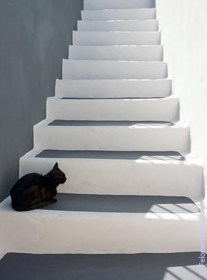 Сонник подниматься на второй этаж дома