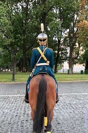 Сонник Всадник