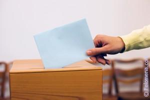Сонник Выборы