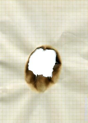 Сонник Выжигать