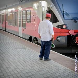 Сонник Железнодорожник